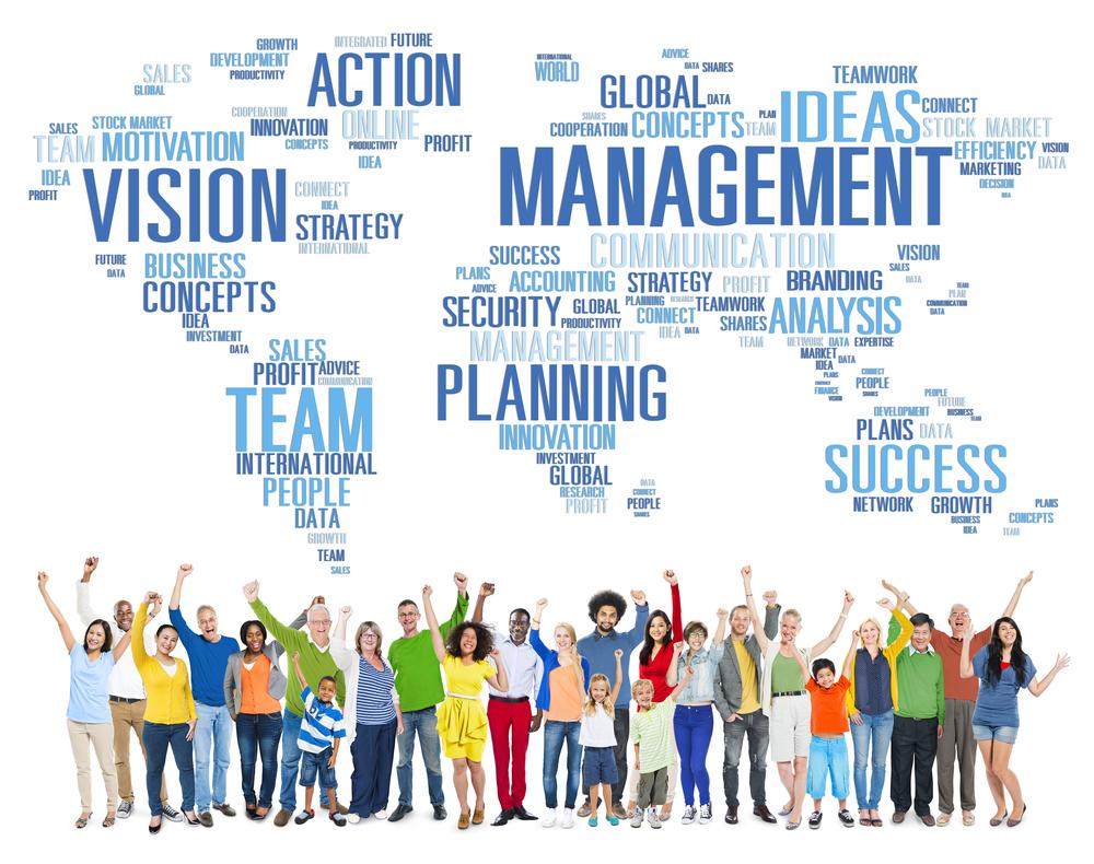 Organització líder